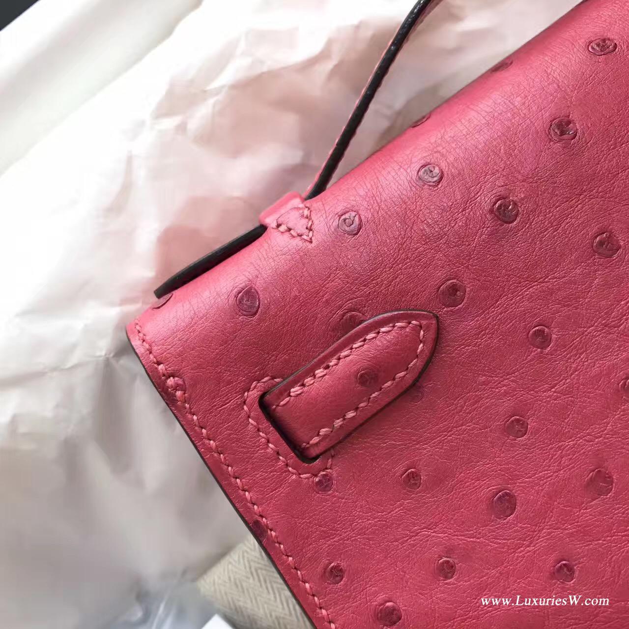 Mini Kelly鸵鸟新颜色8W Rose Azalee 新唇膏粉色 适合夏天用金色金属