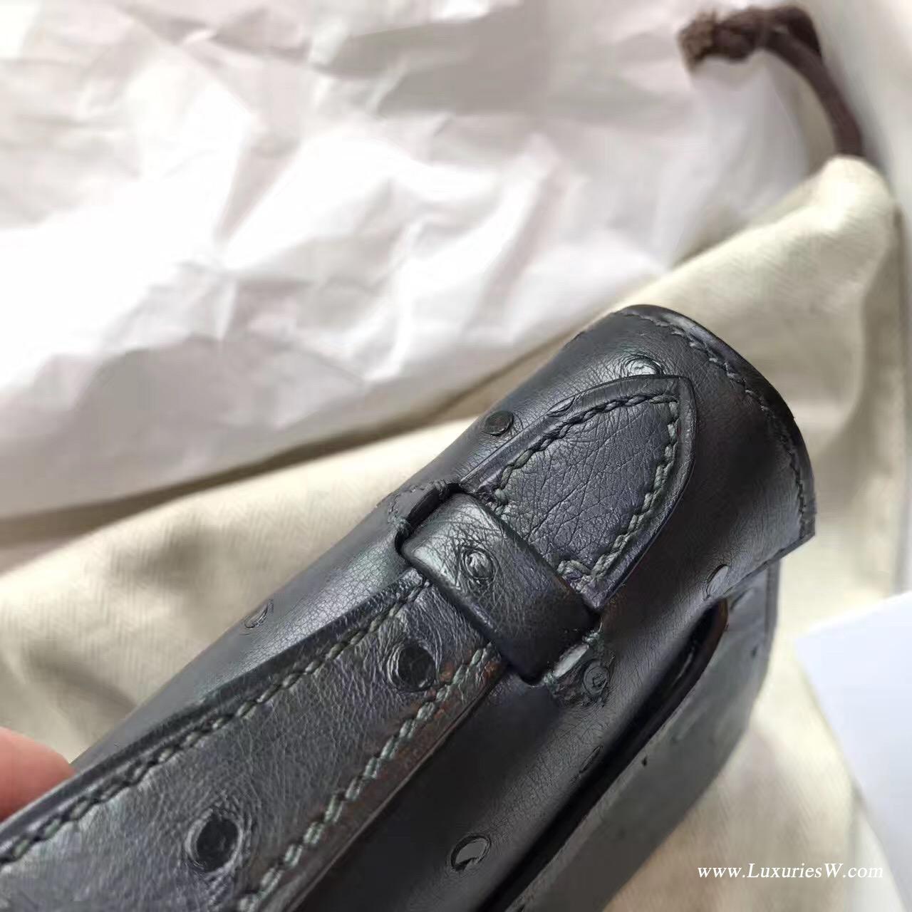 愛馬仕Hermes mini Kelly壹代 8F Etain 锡器灰鸵鸟 比大象灰 银色金属