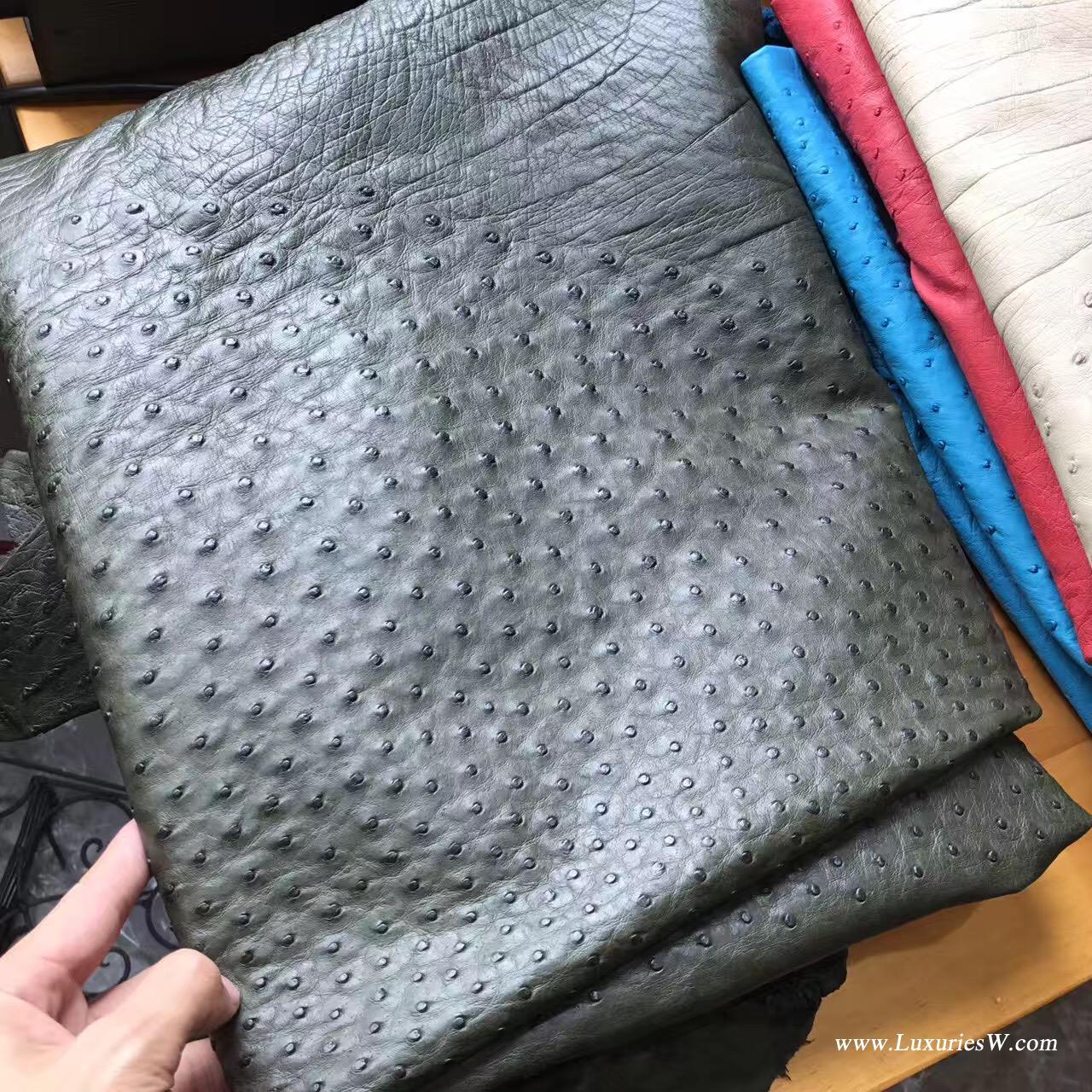 世界上最名贵优质皮革 鸵鸟皮 Hermes爱马仕 Birkin Kelly 鸵鸟皮皮革
