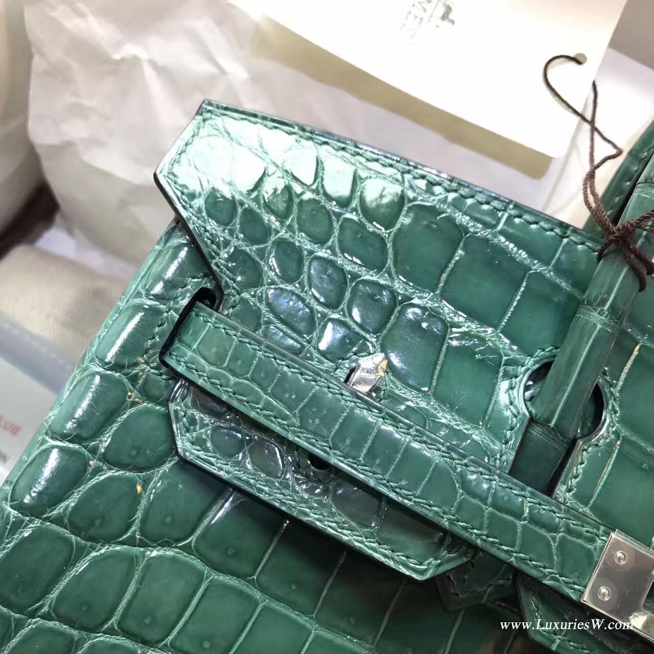 愛馬仕鉑金包Hermes Birkin 25 鱷魚光面野生倒V 2Q 英國綠Vert Anglais