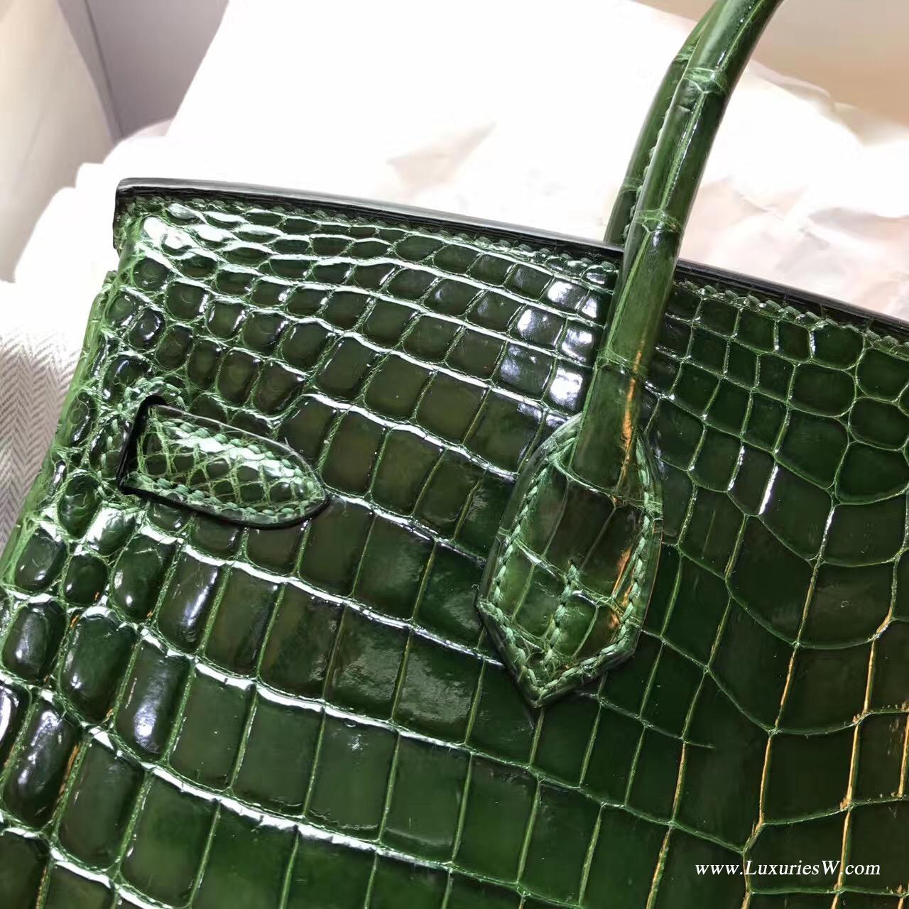 愛馬仕鉑金包 Hermes Birkin 25 光面鱷魚CK67 Vert Fonce祖母綠