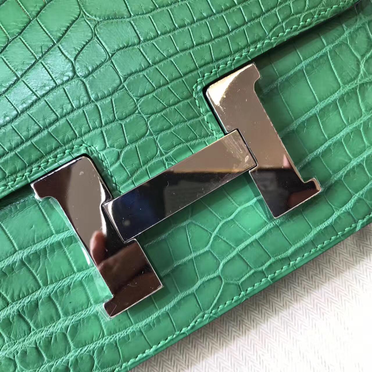 Hermes Constance 23 crocodile leather霧面鱷魚皮革 仙人掌綠色cactus green