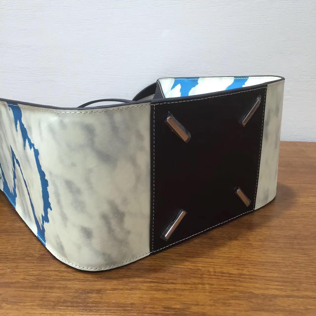 2017新款Loewe羅意威小號Hammock Bag藍天白雲圖專櫃限量版
