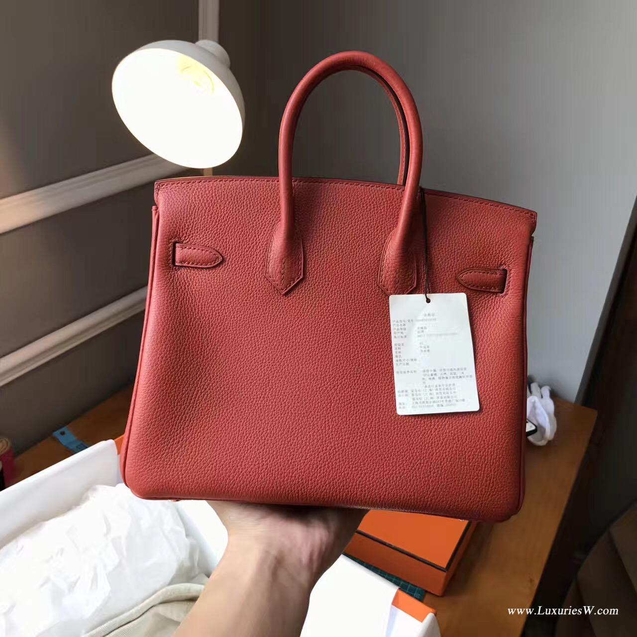 Hermès 铂金包(Birkin)爱马仕最出名的包袋 Birkin 25 togo小牛皮古铜色