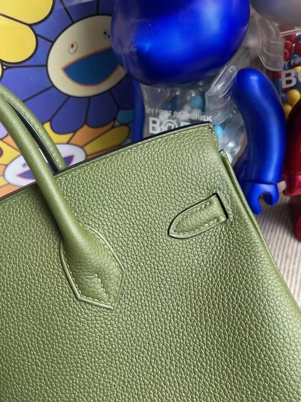 Hermes Birkin 25cm Togo V6 Canopee 叢林綠 銀扣 全手工縫製