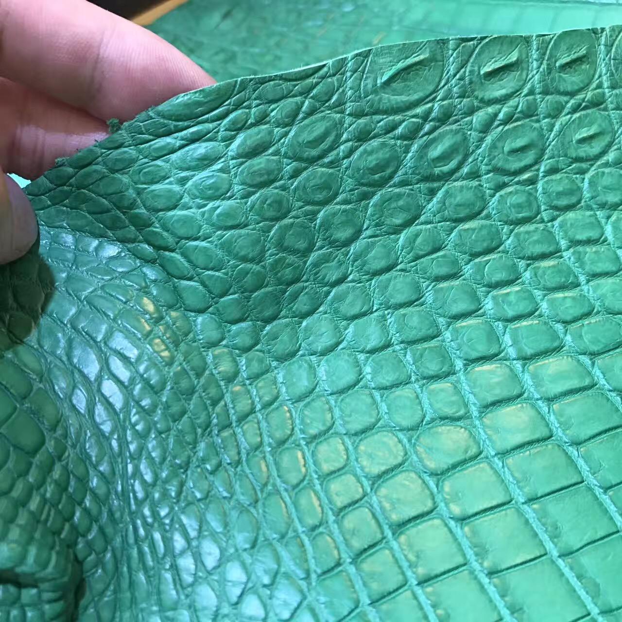 愛馬仕鱷魚皮光面 1L仙人掌綠色 18constance 霧面