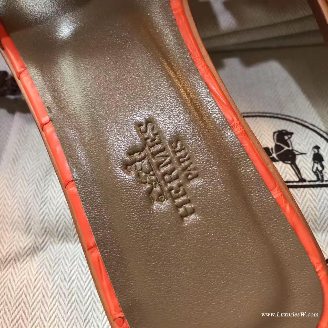 愛馬仕Hermes女士涼鞋 H型拖鞋 鱷魚霧面 9J Fen火焰橙中跟 平底涼拖鞋