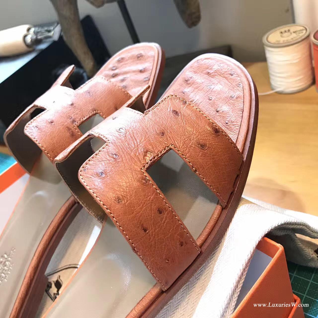 愛馬仕Hermes女士涼鞋 H型拖鞋 鴕鳥皮 CK37 Gold金棕色 平底涼拖鞋