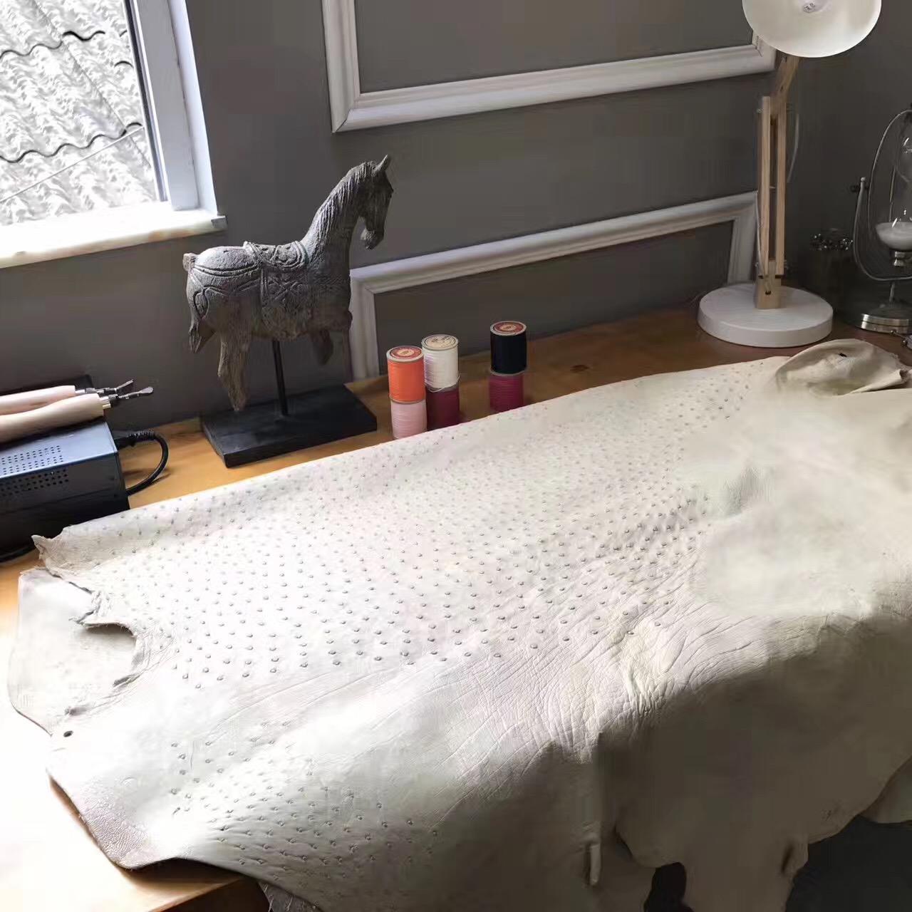 鴕鳥皮屬世界上名貴的優質皮革之壹 愛馬仕 CK10 Craie綿羊白鴕鳥皮