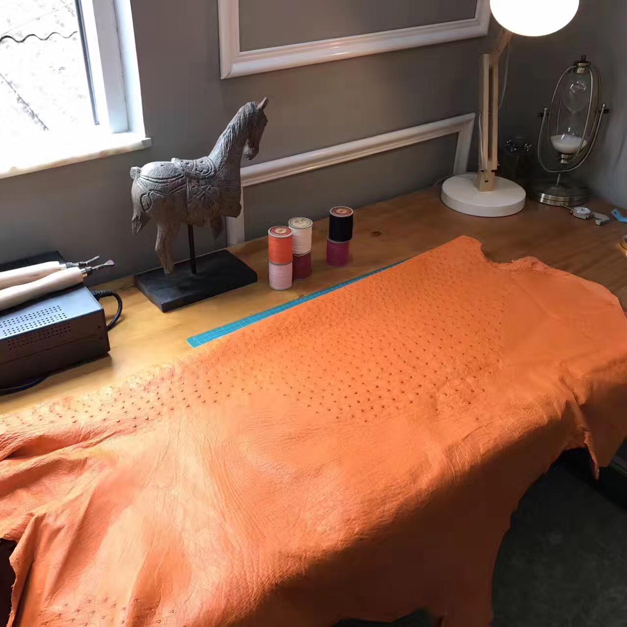 鴕鳥皮屬世界上名貴的優質皮革之壹 愛馬仕 CK93 Orange經典橙 鴕鳥皮