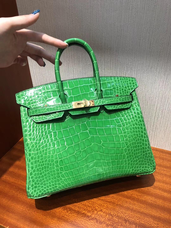愛馬仕2018新款包包Hermes 1L仙人掌綠色 Birkin 25 方塊 美洲鱷魚完美紋路 金扣
