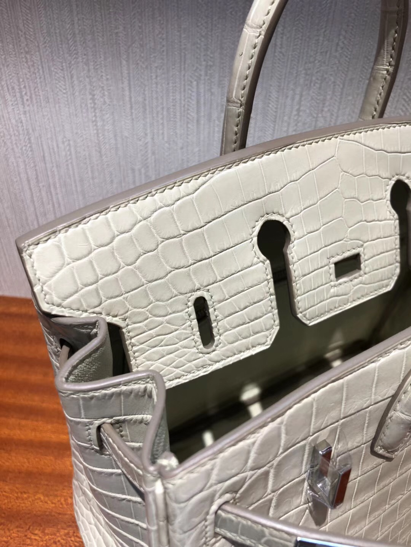 愛馬仕鱷魚皮鉑金包包Hermes Birkin 25cm Bag 8L奶油白 霧面兩點鱷魚 銀扣