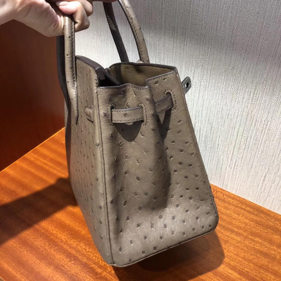 Hermes 鉑金包Birkin 25cm CK18大象灰etoupe 原廠南非KK ostrich鴕鳥皮