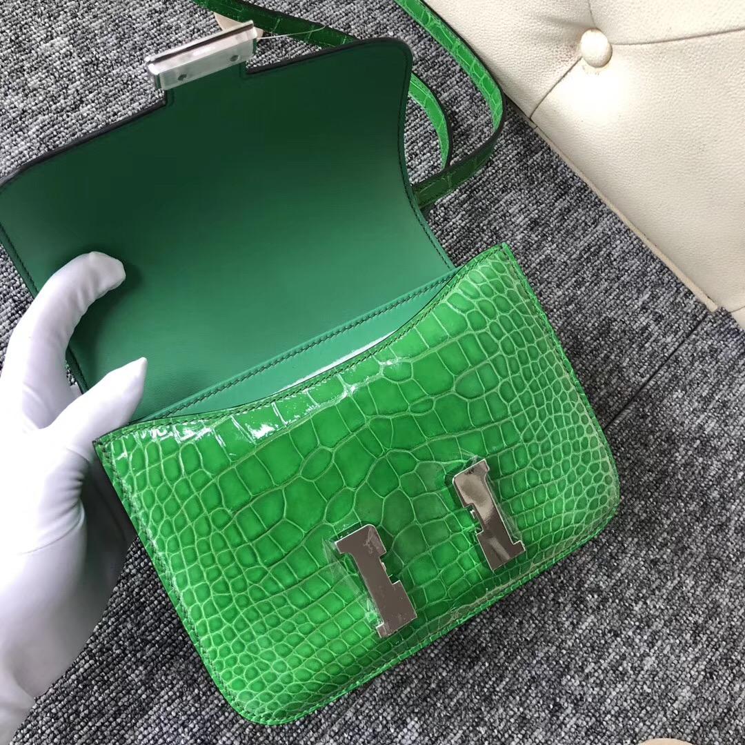 臺北鉑金包價格 Hermes Constance 19cm 1L仙人掌綠 Cactus 美洲鱷
