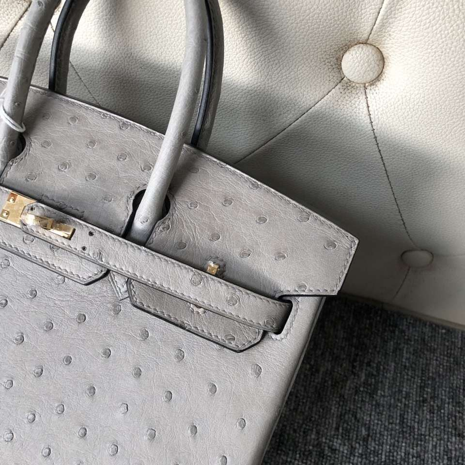 愛馬仕鉑金包尺寸 Hermes Birkin 25cm Ostrich 4Z海鷗灰 Girls Mouette