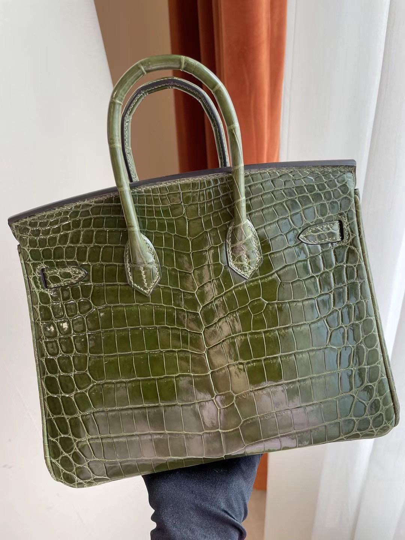 愛馬仕鉑金包25寸專櫃價格 Hermes Birkin 25 6H Olive green 橄欖綠 尼羅鱷魚