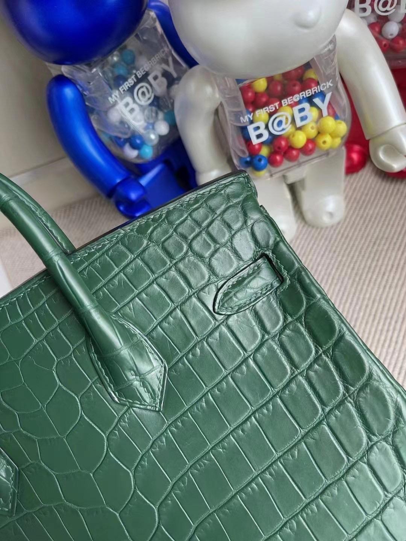 Hong Kong Hermes Birkin 25cm 霧面尼羅鱷魚 1T Vert Titlen 提香綠 泰坦綠 金扣