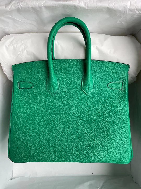 愛馬仕鉑金包及價格 Hong Kong Hermes Birkin 25cm Togo 6W Menthe 薄荷綠